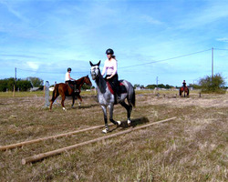 Ecuries La Bordette - Mondonville - Nos activités